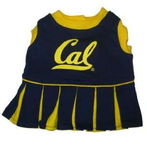 Bears NCAA pet dog cheerleader dress SM 8 15lbs