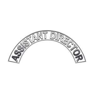 Assistant Director White Firefighter Fire Helmet Arcs / Rocker Decals