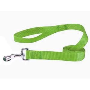 Zack & Zoey Nylon Dog Lead, 6 Feet, Parrot Green