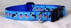 Designer Boston Terrier Dog Collar BLUE Med.Made in USA