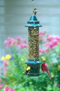 BROME SQUIRREL BUSTER PLUS SQUIRREL 1024 PROOF BIRD FEEDER
