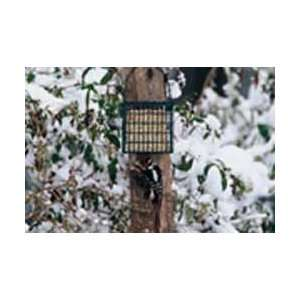 Droll Yankees Suet Feeder with Pole Clamp Patio, Lawn